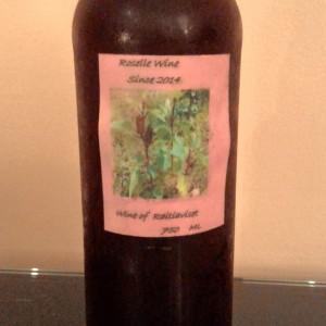 パンガン島産マオベリーワインとローゼルワインはフレッシュな美味しさ