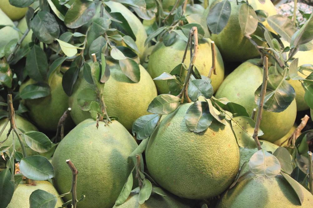 ソムオー(ザボン)- タイの果物