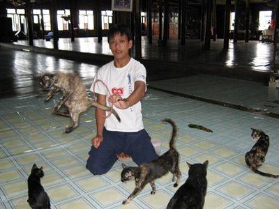 ミャンマー情報