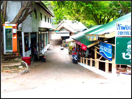 タイのチャイヤプームで波瀾万丈移住生活