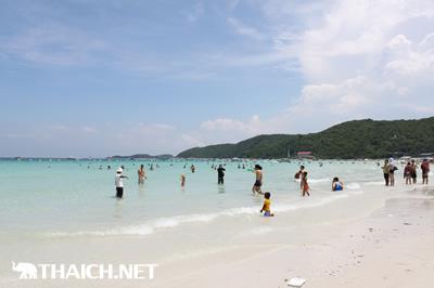 タイ人はなぜ服を着たまま泳ぐのですか?