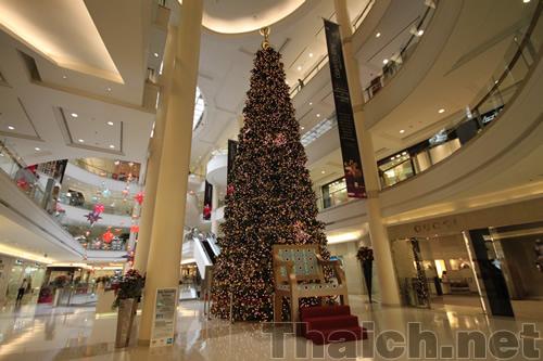 ゲイソン(GAYSORN)内のクリスマスツリー 2010