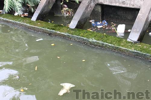 セーンセープ運河で泳ぐ少年たち