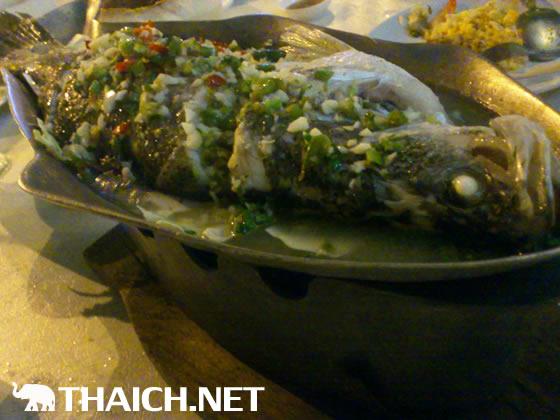 Talay Bangkok Pub & Restaurant (ร้านอาหารทะเลบางกอก)