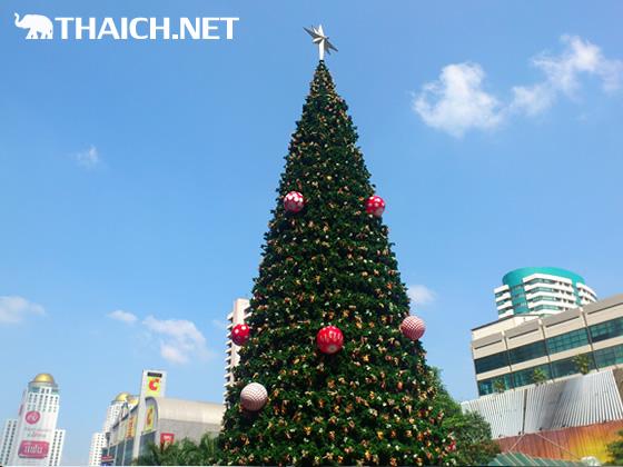 もう年末・・・ セントラルワールド前のクリスマスツリー