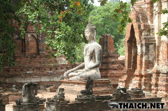アユタヤ・ワットマハタートの木の根に埋もれた仏頭と頭のない仏像