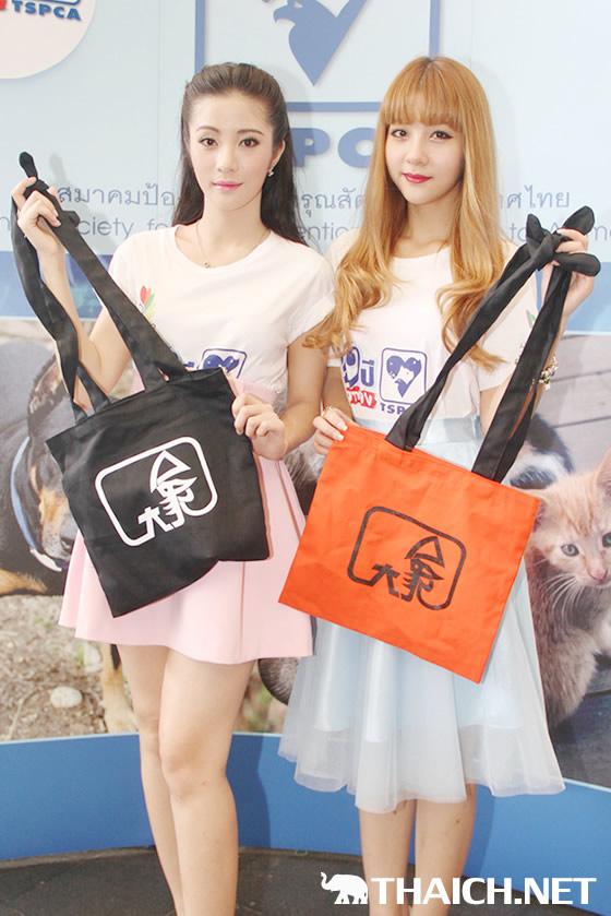双子のアイドルNEKO JUMPがホームレス動物保護をアピール