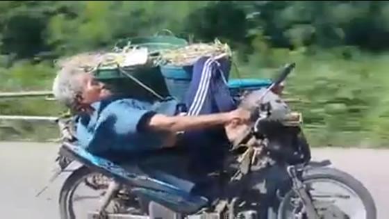 寝ながらバイクを運転するタイのおじいちゃんが大人気に
