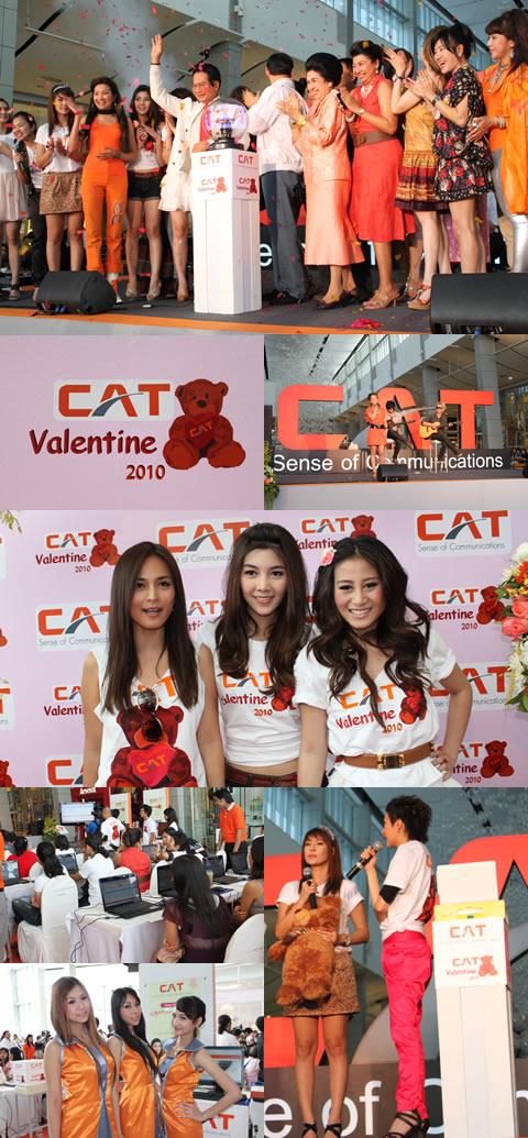 CAT Valentine 2010