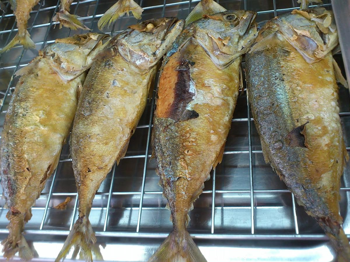 プラトゥーというアジに似た魚
