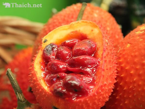 ファッカーオは栄養満点の果物、美容や健康に効果あり!【TVウォッチング】