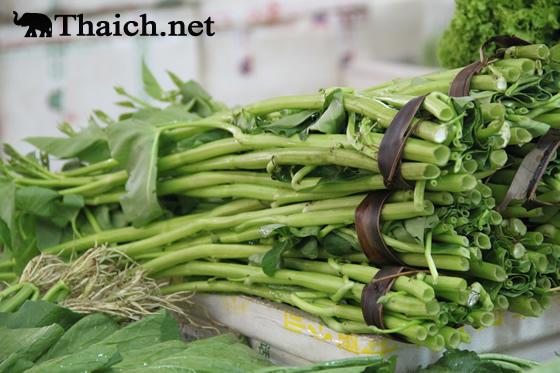 「空芯菜(くうしんさい)」は商標登録されている