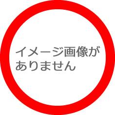 『私を抱いて! レインボーブリッジに佇む女 東京-バンコク、愛憎殺人』 - ドラマ