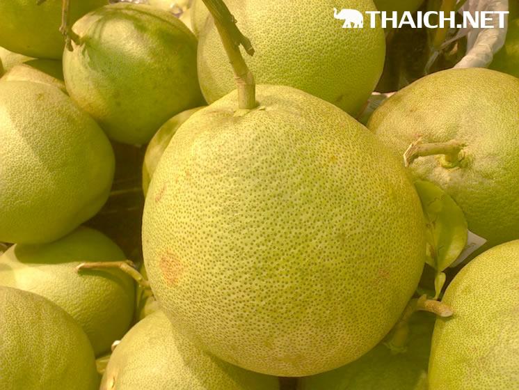 日本に輸入できるタイのフルーツを教えて下さい
