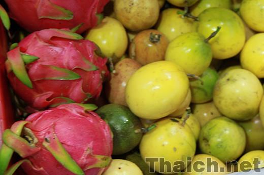 แก้วมังกร Thai Fruits Festival