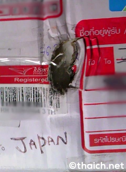 タイの郵便局が多重梱包を推奨!「これなら壊れません」