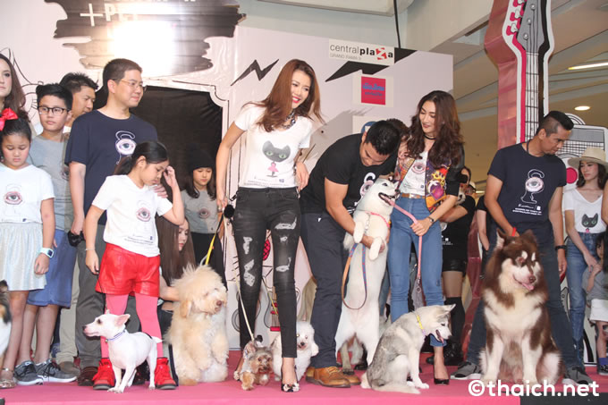Bangkok Pet Charity 2016 12