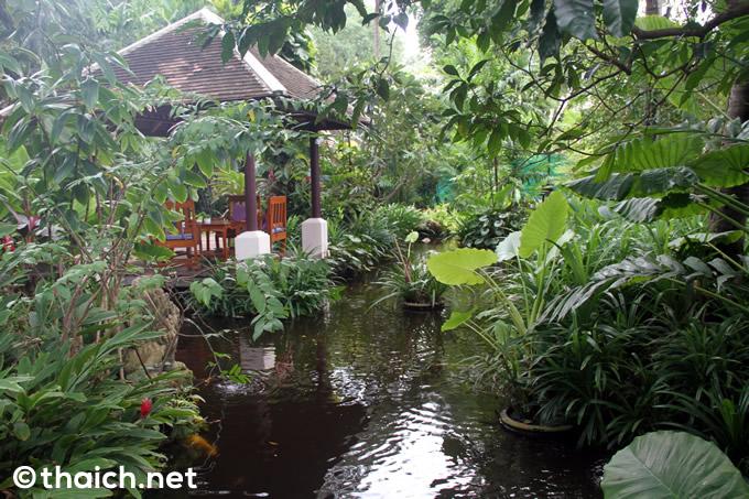 サムイ島「チャウエン リージェント」のスパヴィラと自然が残るトロピカルな庭
