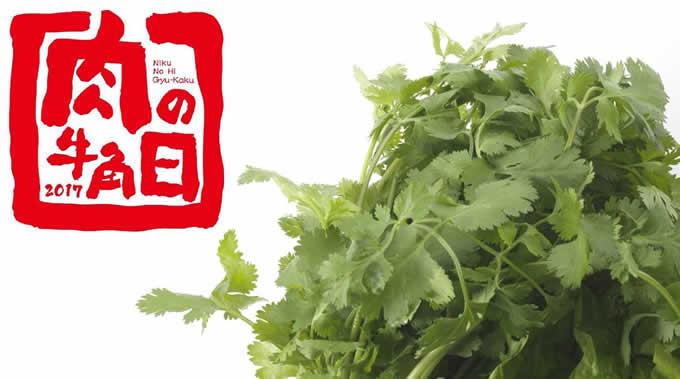 「牛角」で7月29日限定「肉の日」のパクチー企画