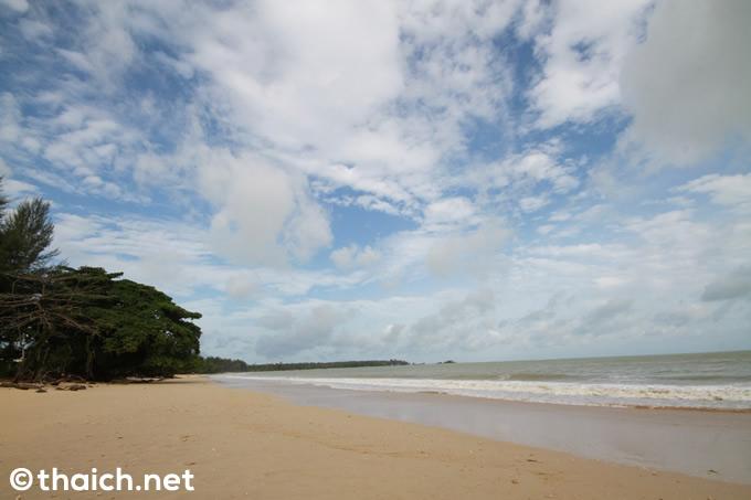 タイ南部カオラックのビーチが大波で侵食、一部でヤシの木も倒壊の危機