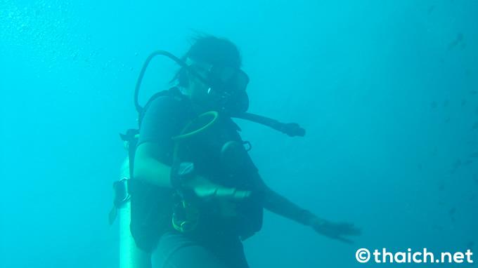 シミラン諸島・スリン諸島エリアへのツアーに人数制限、ダイバーは1日525人まで