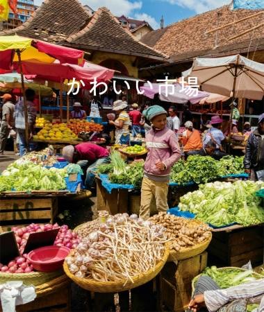 バンコクのナイトマーケットなどでかわいいモノを探す旅、写真集『かわいい市場』発売