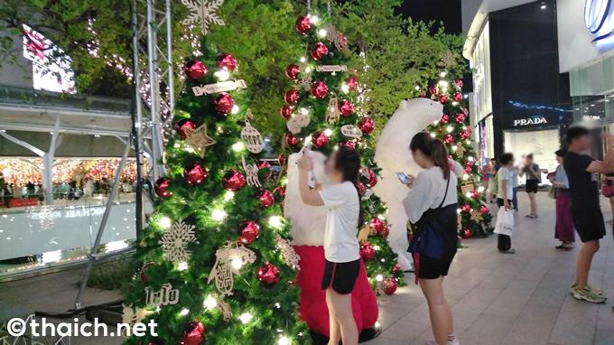 街は早くもクリスマス気分、エムクオーティエのクリスマスツリーの賑わい