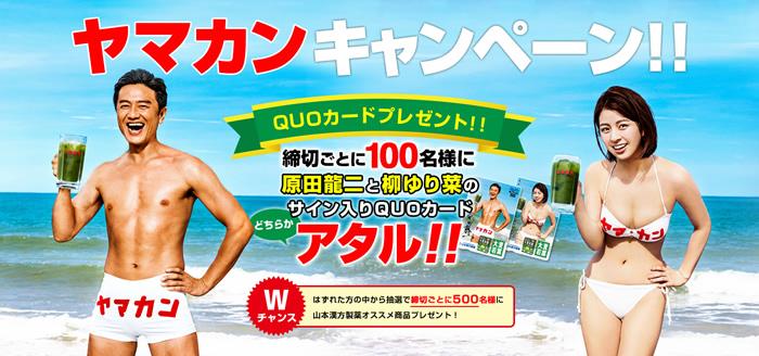 原田龍二と柳ゆり菜がタイのビーチでこたつ、「大麦若葉」冬バージョンCM