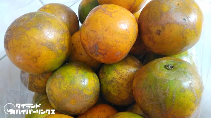 将軍オレンジ(ソムショーグンส้มโชกุน)