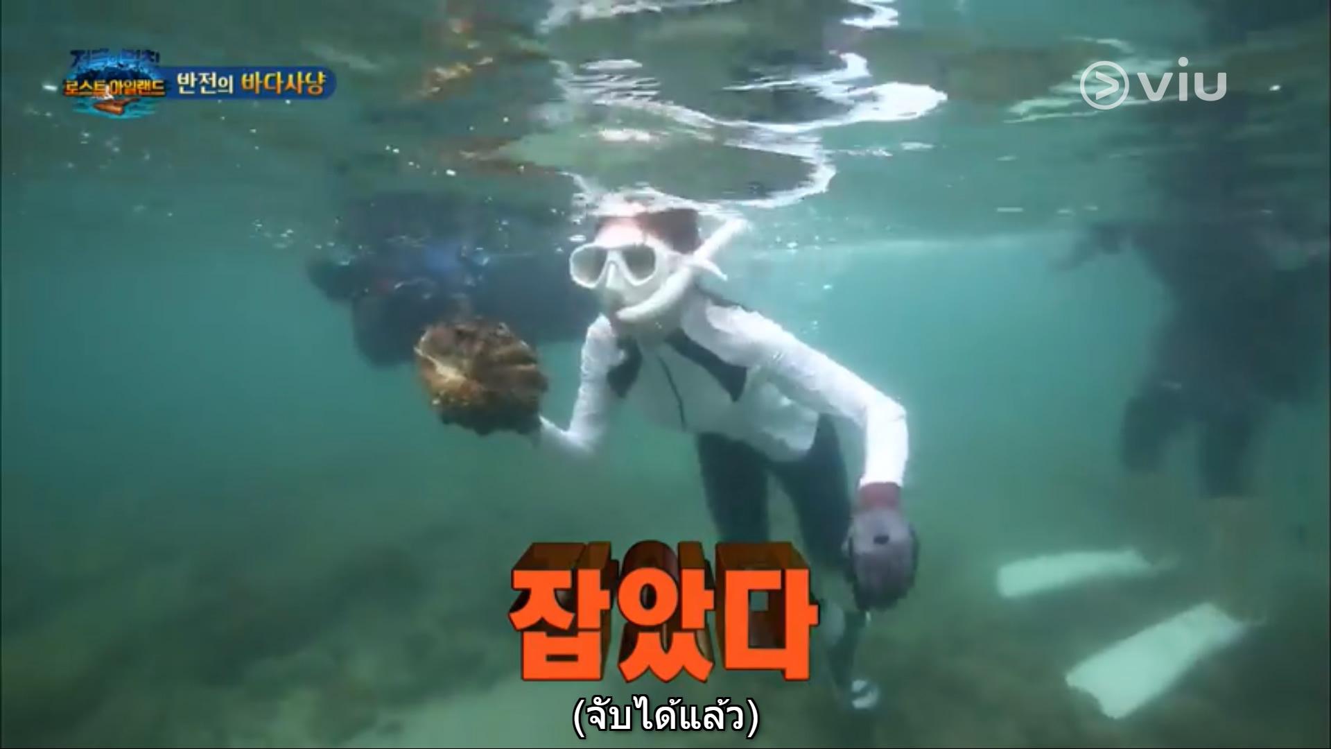 韓国のTV番組、タイで絶滅危惧種のオオシャコガイを捕獲して食べる