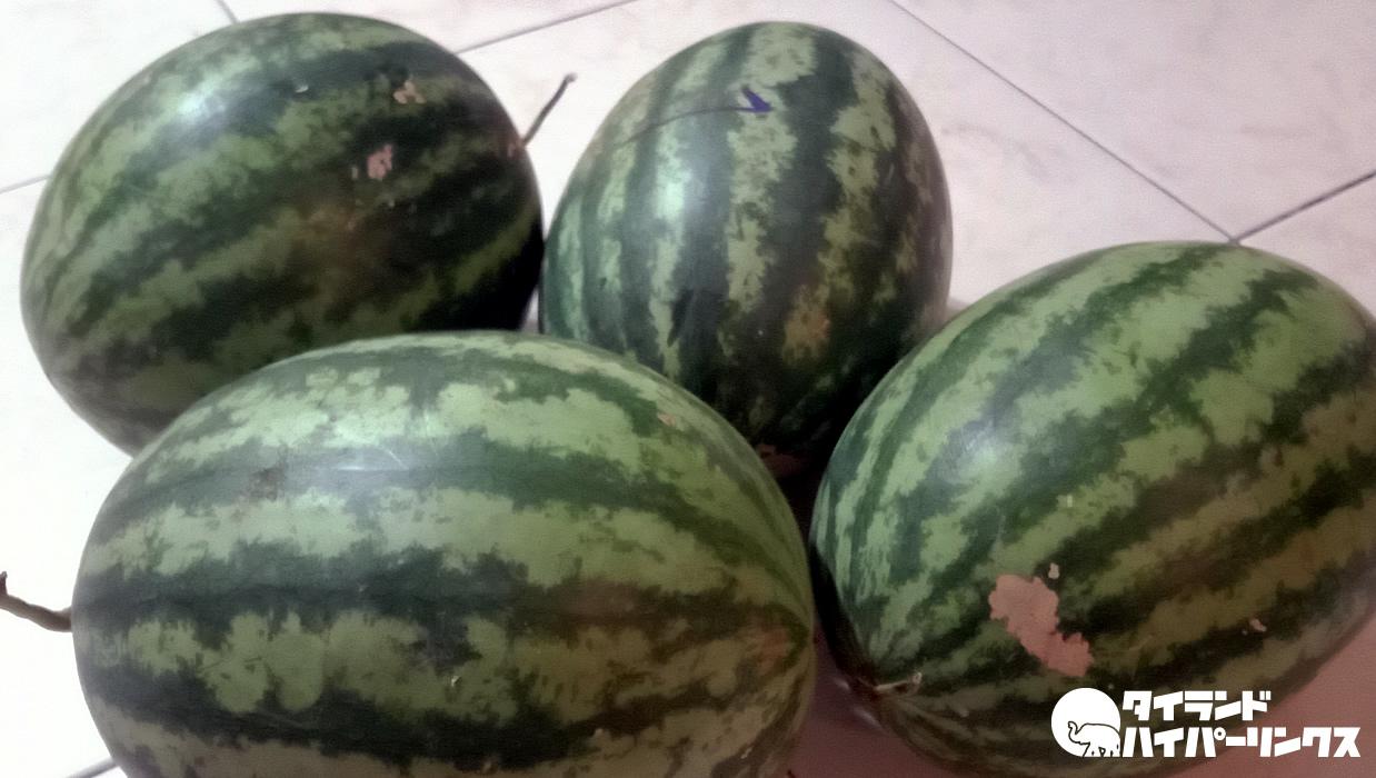 今日もトラックで果物売りがやって来た~スイカ4個で100バーツ!