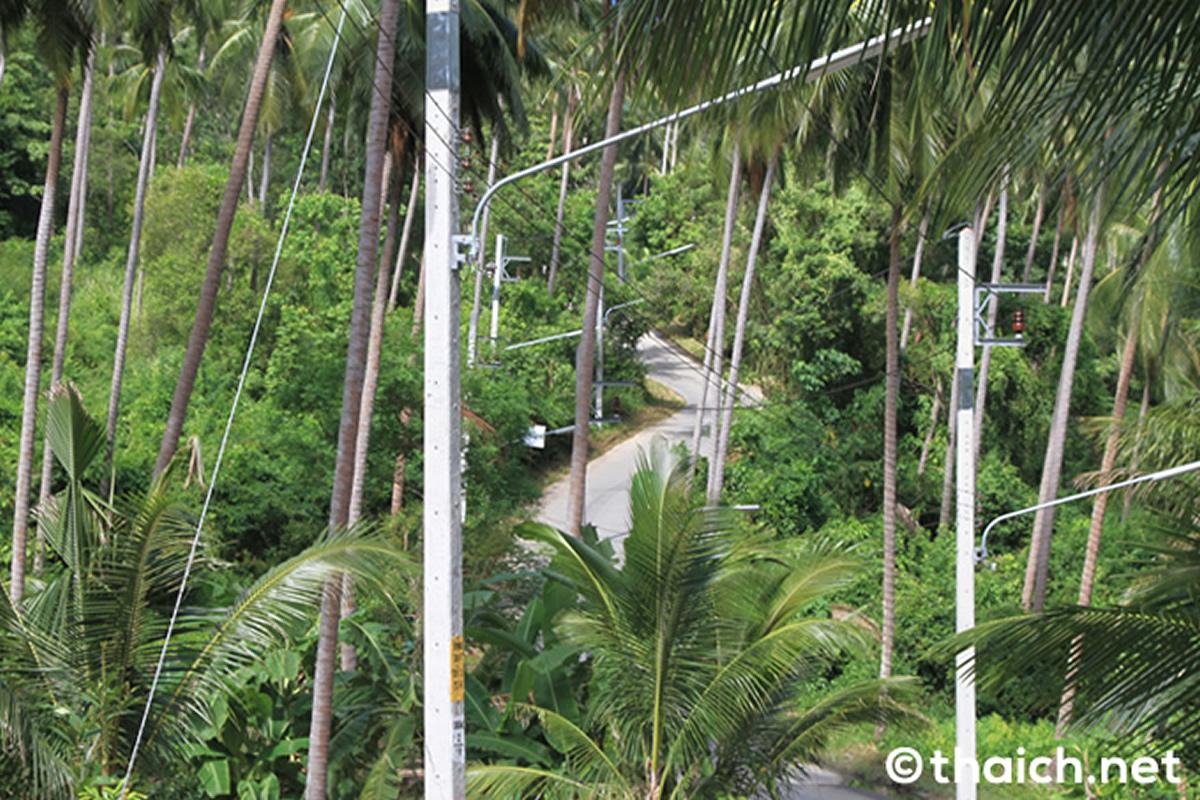 サムイ島で外国人女性の腐乱したい見つかる