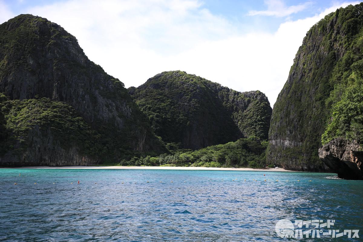 タイ・マヤベイの再オープンは未定、サメは戻り60匹が生息