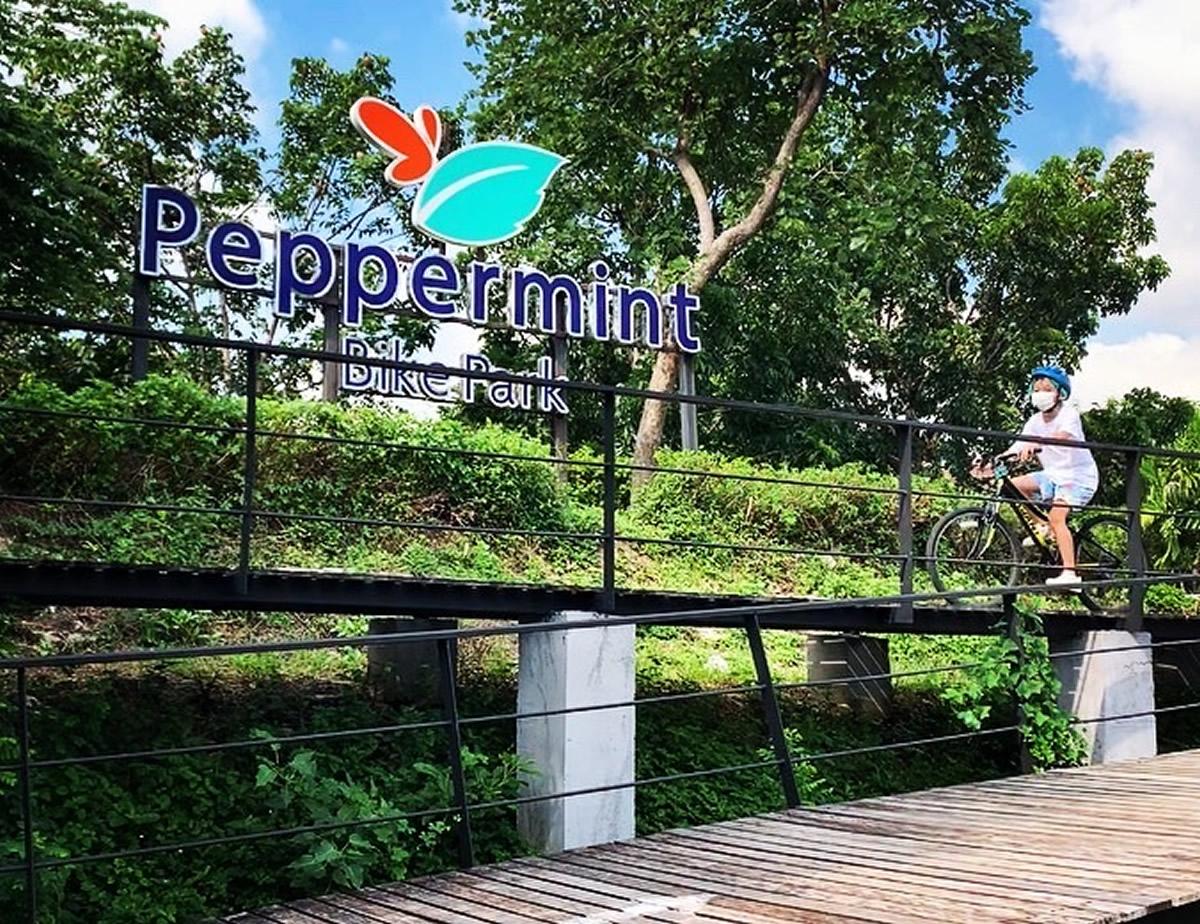 ペパーミントバイクパーク:バンコクで本格マウンテンバイクに挑戦