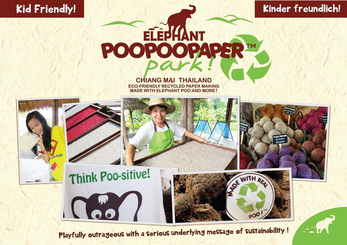 象のウンチで紙を作る!チェンマイの「エレファント・プープペーパー・パーク」