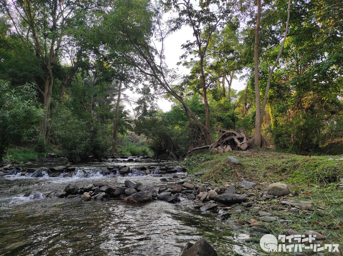 タイ国立公園のキャンプ場でバーベキュー禁止へ