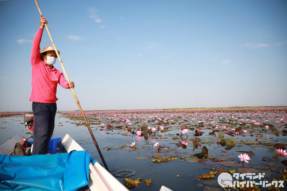ウドンタニの紅い睡蓮の湖「タレーブアデーン」