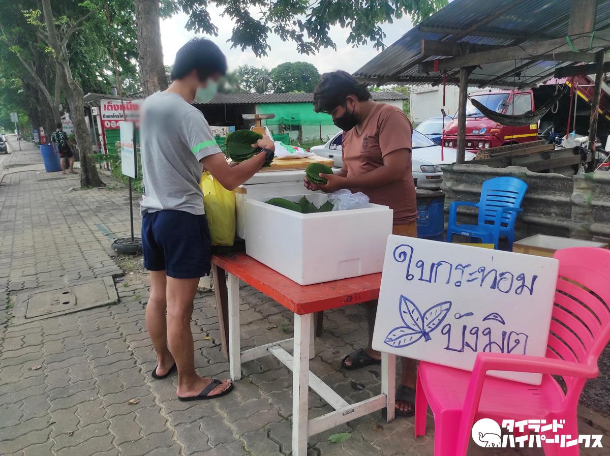 タイでのクラトムの売買、こんなに自由になりました