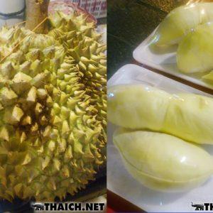 Yaki Durian
