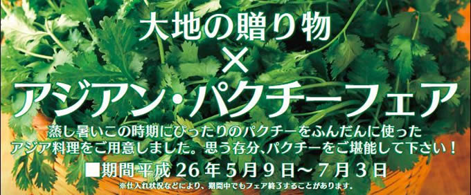 東京・上野「大地の贈り物」で「アジアン・パクチーフェア」開催