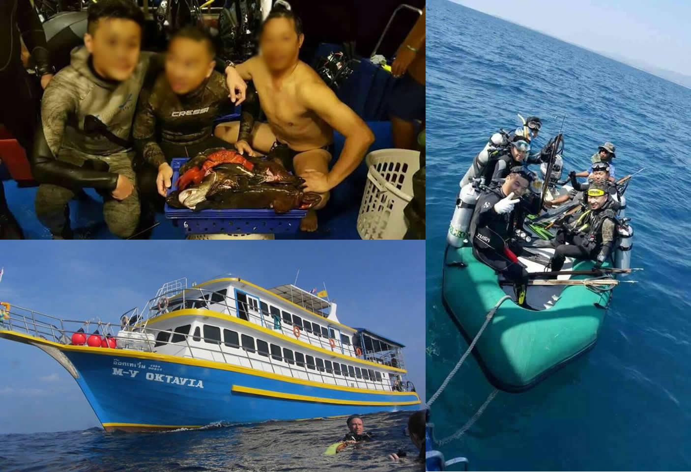 中国人観光客らがタイ・シミラン諸島で大漁、タイ人は激怒