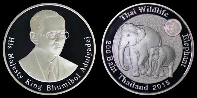 kinen coin (2)