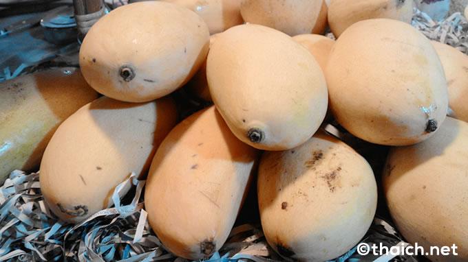mango mochigome 04